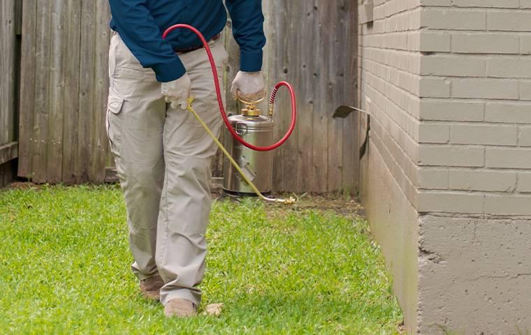 exterior spray treatments