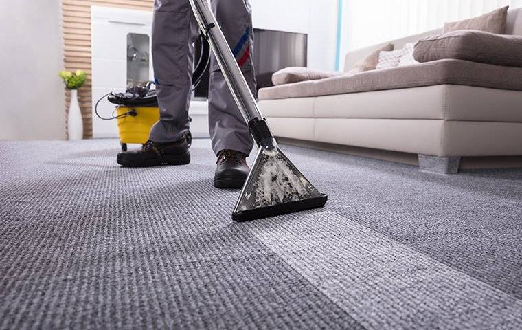 cleaning a carpeted floor