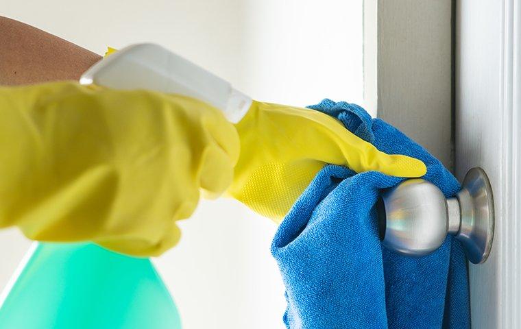 cleaning a door knob