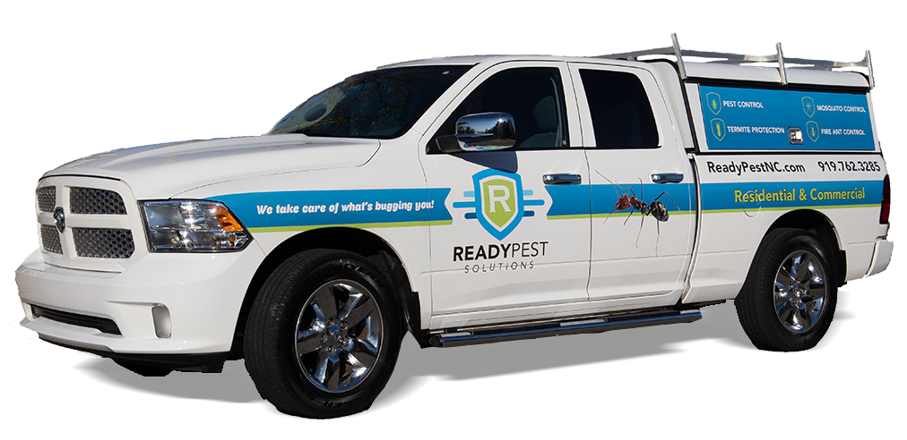 Readypest white can facing left with blue accents and logo on side of truck