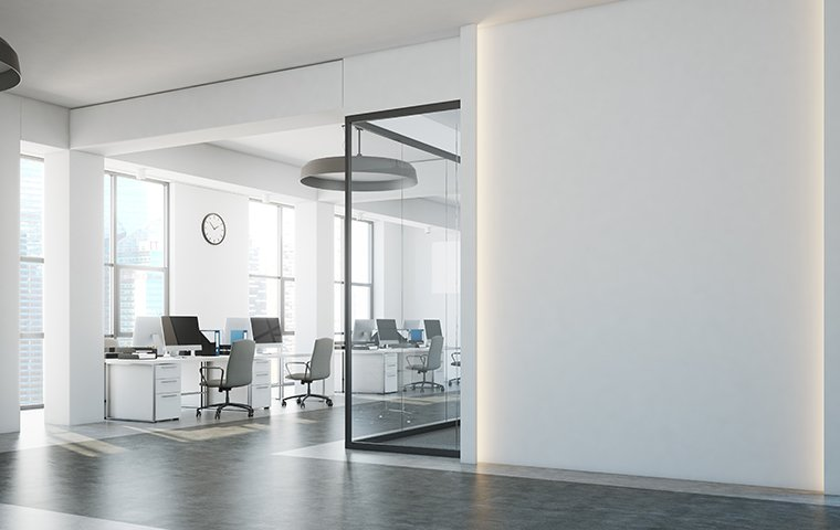 clean white offices
