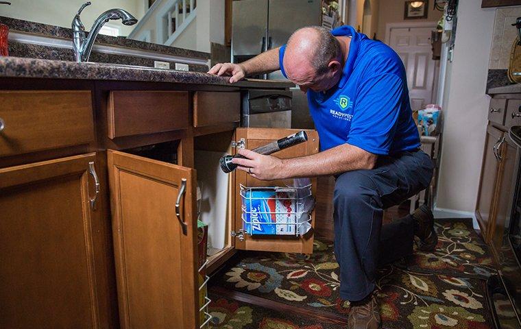 technician inspecting under kitchen sink