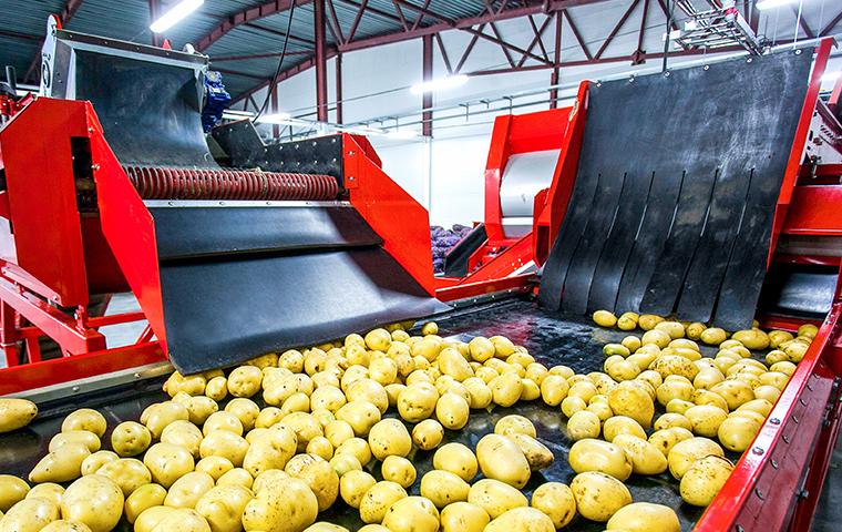 interior view of a potato processing building in montgomery county pennsylvania