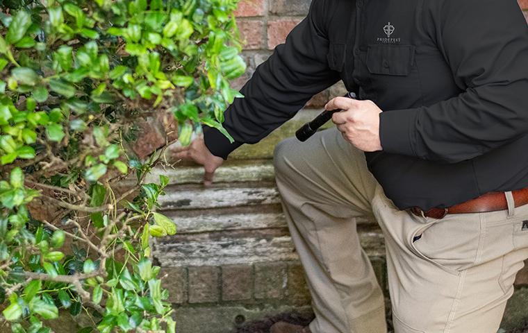 tech inspecting exterior