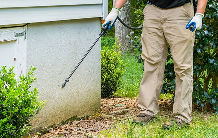 a cantu pest control service technician spraying the exterior of a home with pesticides in fort worth texas