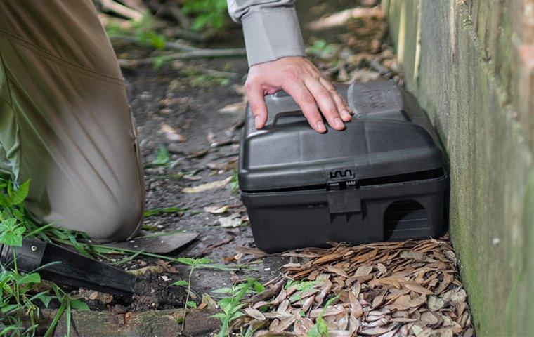 a cantu pest and termite service technician installing a rodent bait station outside of a home in dallas texas