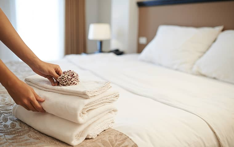 a hospitality worker folding towels inside of a hotel room in dallas texas