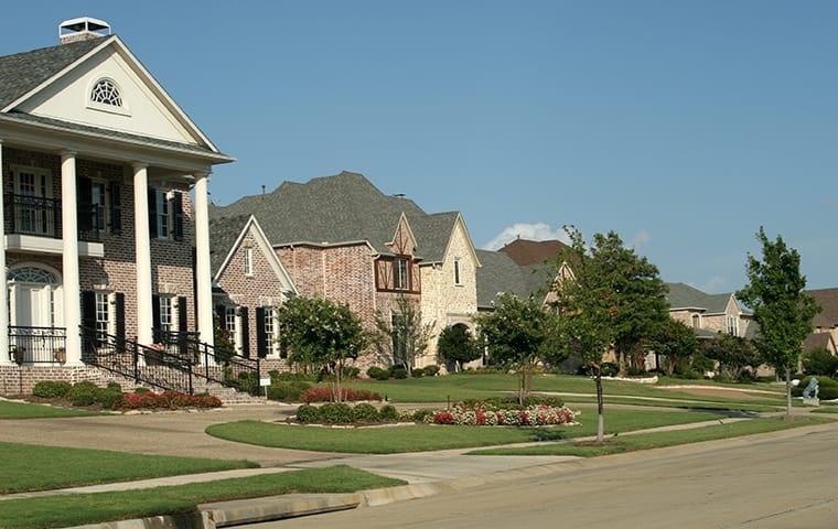 street view of a suburban neighborhood in dallas texas