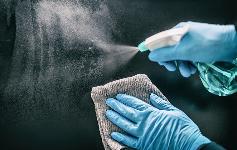 gloved hands spraying disinfectant on window