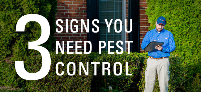 maryland pest control technician inspecting home