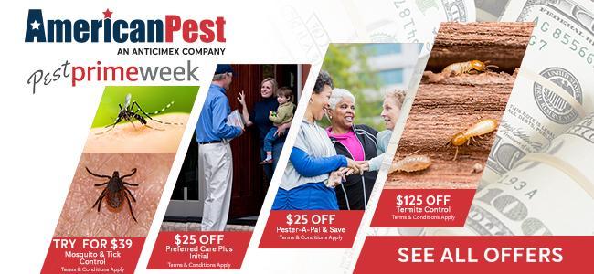 pest prime week