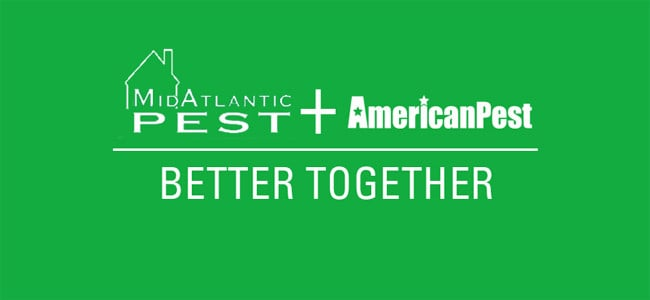 midatlantic pest and american pest partnership logo