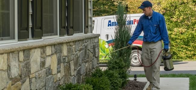 maryland pest control technician treating home for pests