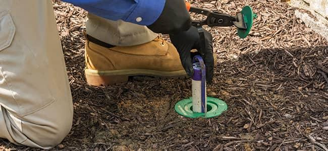 professional pest control technitian installing termite control