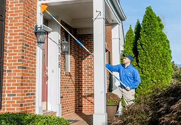 preventing spider webs around maryland home