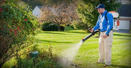 tech spraying maryland yard for mosquitoes
