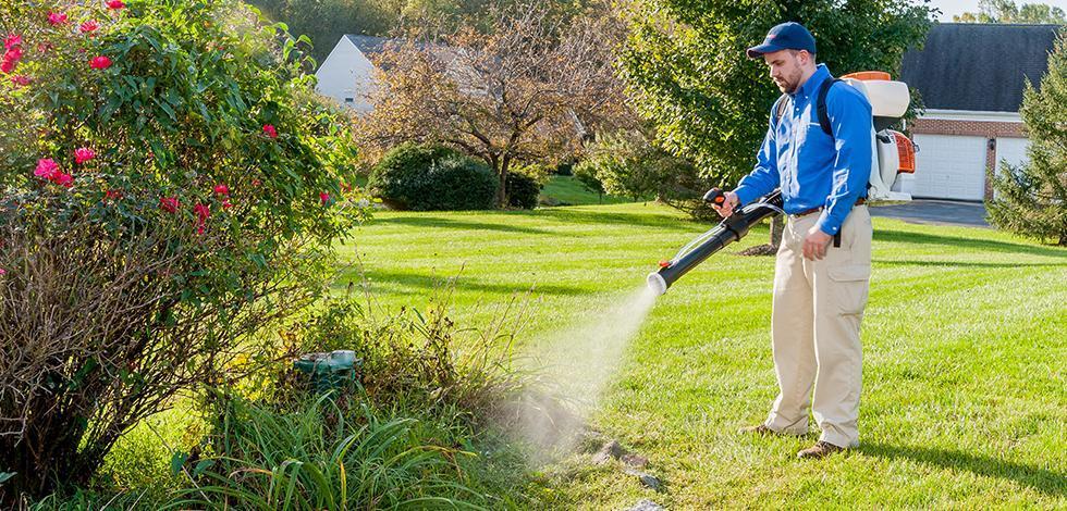 a technician spraying a treatment on a yard in virginia