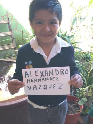 Alexandro Hernandez Vazquez