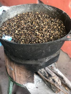 Nicaragua's coffee is amazing!