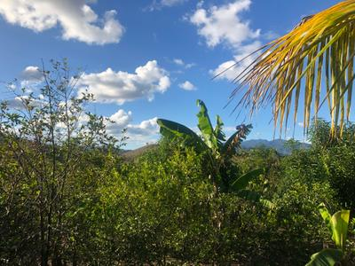 The farm in Jalapa is gorgeous!