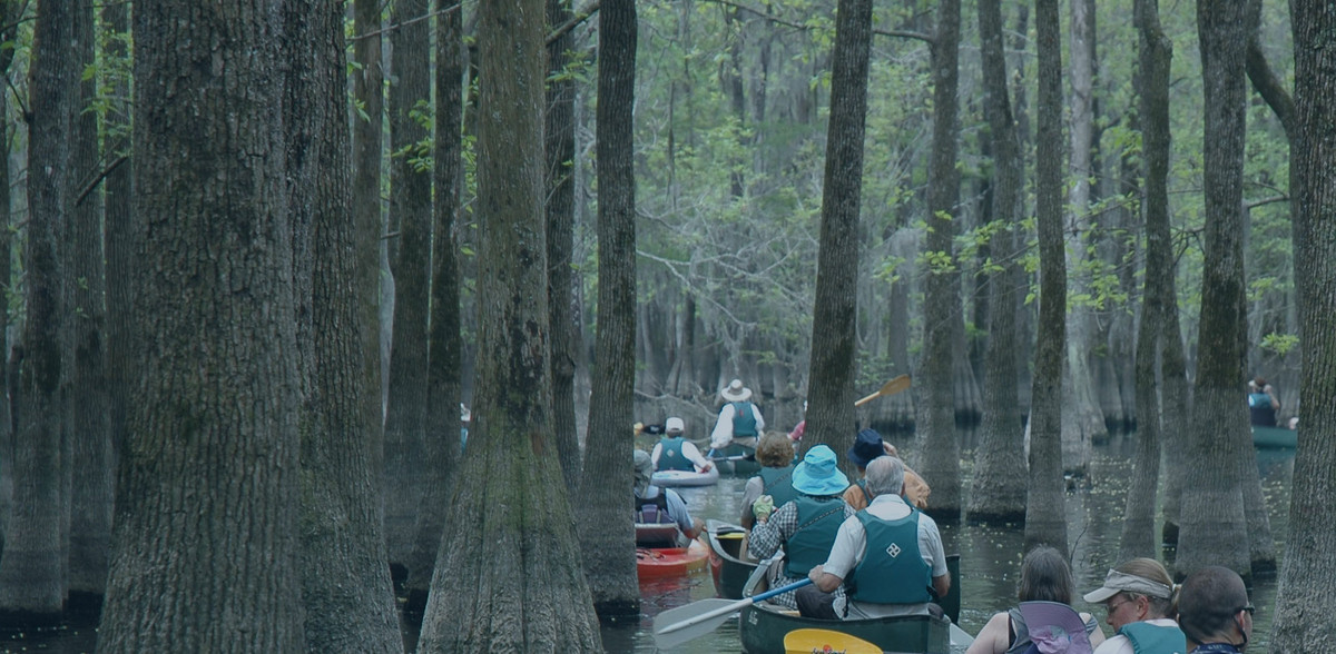 Paddle the Palmetto State