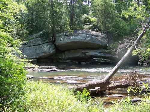 Log Shoals Park site (Credit: Upstate Forever)