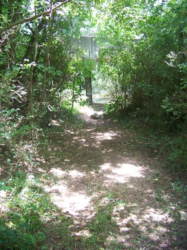 trail leading beneath Dunklin Bridge Road (Credit: Upstate Forever)