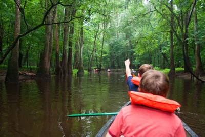 Congaree National Park canoe tour. (Credit: Congaree National Park)