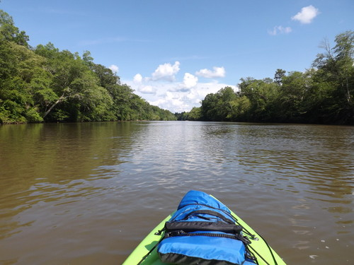 Beautiful Day On The Saluda (Credit: Brandon Burdette)