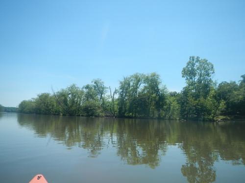 Saluda River meets Lake Greenwood