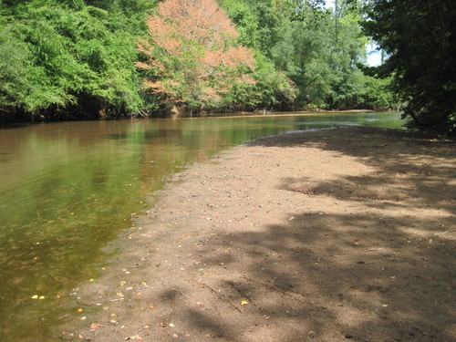 Enoree River at FS 339 (Credit: Upstate Forever)