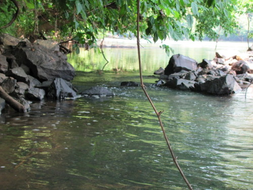 Catawba Fish Dam (looking from the pool upstream to the entrance) (Credit: P Cumalander-Frick)