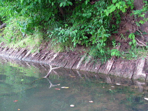 Remains of Old Shelton Ferry can still be seen (Credit: P Cumalander-Frick)