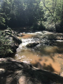 Town Creek at Town Creek Park (Credit: Upstate Forever)