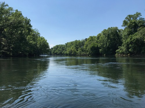 Lower Saluda River (Credit: Nate O'Neill)
