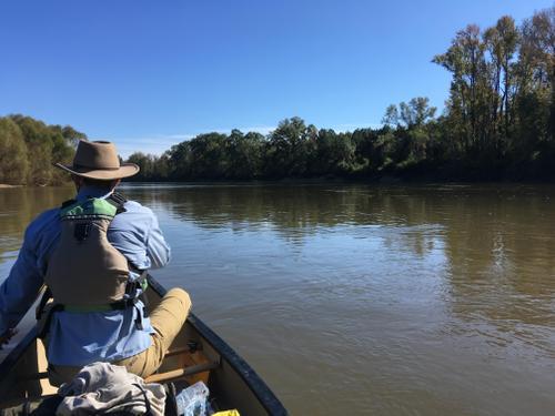 Congaree River (Credit: TA)