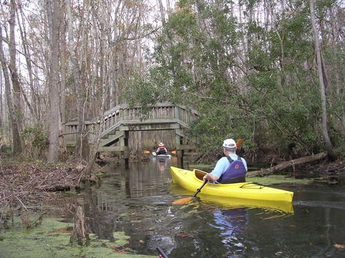 Biggin Creek in Old Santee Canal Park (Credit: Berkeley County Blueways)