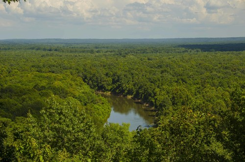 View of Wateree River Floodplain from Cooks Mountain.  (Credit: SCDNR)