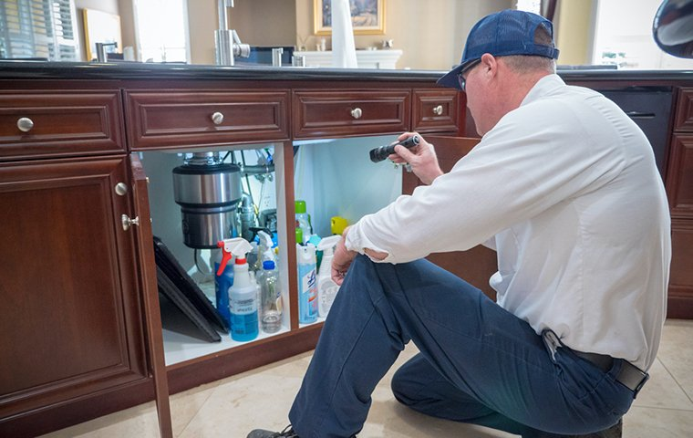 a pest technician inspecting the interior of a house