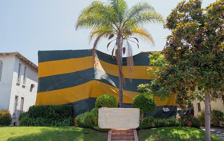 a house with a fumigation tent on it