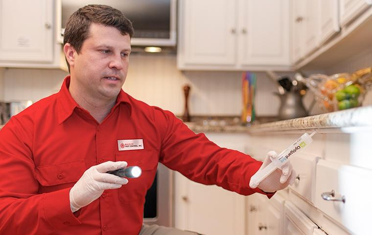 a pest control service technician inspecting a kitchen for pests inside of a home in menifee california