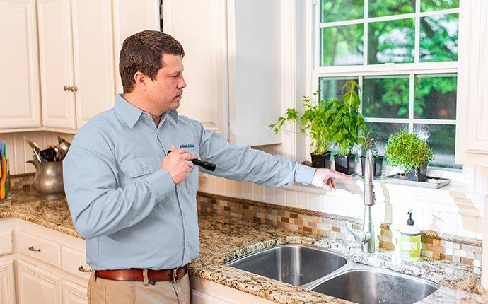 technician inspecting the area around the kitchen sink area of a chevy chase md home for ants