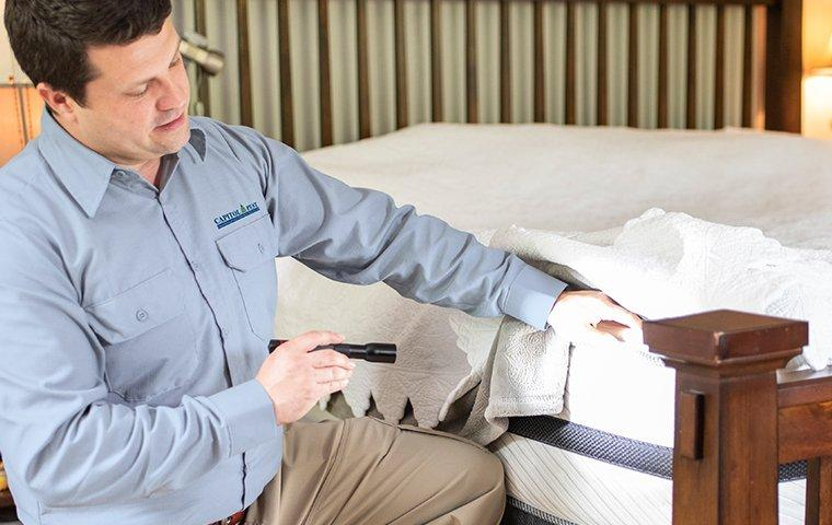 a pest technician inspecting a mattress for bed bugs in washington dc