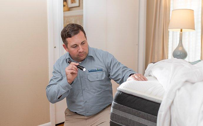 capitol pest technician inspecting a mattress for signs of bed bug activity