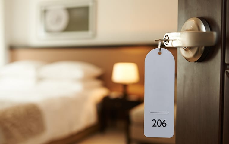 a washington dc hotel room clearn and clear of bed bug infestations