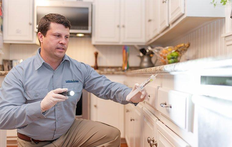 a pest technician treating a kitchen for cockroaches in washington dc