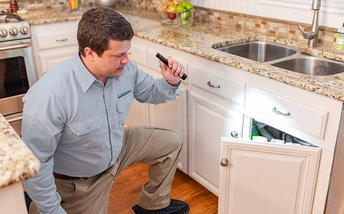 capitol pest technician inspecting a kitchen cupboard underneath a kitchen sink for signs of cockroaches