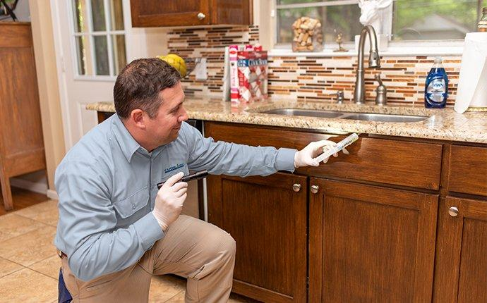 technician performing a cockroach control treatment in a northern virginia kitchen
