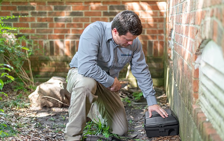 a pest technician checking a rodent trap at a home in washington dc