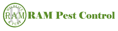 ram wildlife and pest management logo